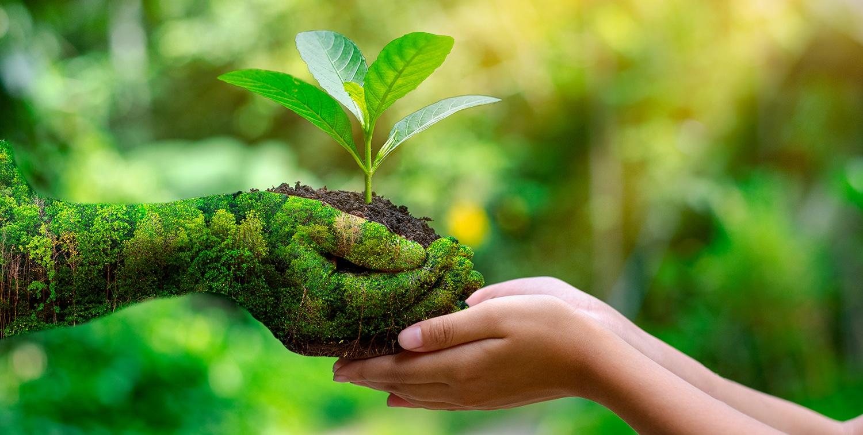 ¿Por qué necesitan las empresas hacer una Gestión ambiental de su actividad